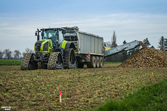 Sugar Beet Unloading | CLAAS // FLIEGL (martin_king.photo) Tags: czechfieldpremiere czechpremiere czech field premiere tracs tractractor green red sky blue clouds bluesky powerfull martin king photo machines strong agricultural greatday great czechrepublic welovefarming agriculturalmachinery farm workday working modernagriculture landwirtschaft martinkingphoto moisson machine machinery huge big agriculture tschechische republik power dynastyphotography lukaskralphotocz day fans work place yellow sugarbeetunloading claasaxion930cmatic flieglgigantasw3101 flieglruby transfer conveyor sugar beet unloading by claas axion cmatic fliegl soucytrack tracks autumn cold