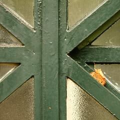 asymmetry (vertblu) Tags: window windowpane mullionandtransom transomwindow patternedglass patterned leaf lindentreeleaf oldpaint paint blistered coated coating bsquare 500x500 vertblu green darkgreen glass glasspane