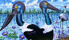 Ephippiorhynchus asiaticus - Black-necked Stork, Anseranas semipalmata - Magpie Geese & Antigone rubicunda - Brolga  - Ages of the Tweed Mural, Commercial Rd, Murwillumbah, NSW (Black Diamond Images) Tags: agesofthetweedmural jurassic jurassicperiod megafauna earthlearning mural art painting floodmitigationwall commercialrd murwillumbah nsw murwillumbahartstrail appleiphone7plus iphone7plusbackdualcamera iphone7plus phone7plus iphone appleiphonepanorama panorama iphonepanorama appleiphone7pluspanorama ephippiorhynchus ephippiorhynchusasiaticus blackneckedstork antigone antigonerubicunda brolga nymphaea possiblynymphaeacaerulea bluelotus