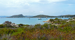 Sardegna, isola di caprera (duqueıros) Tags: italia italy italien sardinien sardegna insel isle küste coast landschaft nature meer sea duqueiros