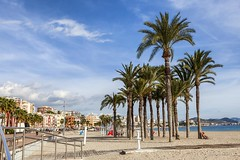 Playa Centro, Villajoyosa, Alicante (Carlos SGP) Tags: españa es comunidadvalenciana alicante villajoyosa playa mar arena palmera sol paraiso mediterraneo beach mer sea casas