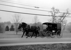 Going to Town (Nickademus42 (Thank you for 1 million views)) Tags: fuji acros 100 120 film zeiss box tengor camera amish wagon kentucky