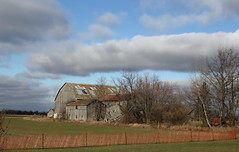 Steeles and Ninth Line (Doris Burfind) Tags: farm barn peel rust decay weathered scenery