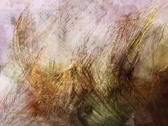 Composition (Jacek Krasodomski) Tags: abstract composition digitalpainting drawing jacekkrasodomski