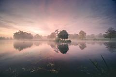 Dawn Vista (unciepaul) Tags: dawn sunrise lake water reflections wide angle calm deene park northamptonshire longexposure tripod sonya6000 laowa beautiful