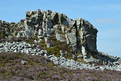 Stiperstones, Shropshire (Seventh Heaven Photography *) Tags: stiperstones shropshire nikon d3200 heather erica wid countryside nature landscape rocks rock hill sky blue devils chair