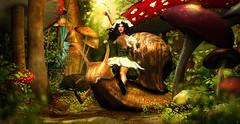 The Snail ride (meriluu17) Tags: hextrordinary fairyy fae pixy snail animal outdoor wonderland fantasy elven elf ride funny fun garden forest mushroom mushrooms shroom petal petals woods magical tale magic people portrait ridding fairytale