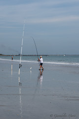 Fishing at Jetty Park (Gwendolyn Henderson) Tags: jettypark pier beach fish bird