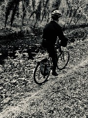 Towpath (The Big Jiggety) Tags: canal cyclist cycliste bicycle monochromatic