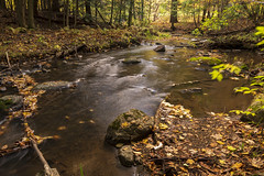 The Way Of The Water (Kevin Tataryn) Tags: landscape water creek flow longexposure woods forest wide nikon d500 tokina 1116 canada