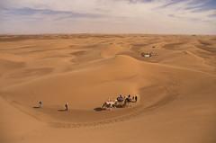 Caravane et bivouac (FrancoisKaa) Tags: dromadaire maroc désert