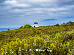 Portugal 2017-9052118-2 (myobb (David Lopes)) Tags: 2017 allrightsreserved atlanticocean europe nazare portugal absence buildingexterior buildingstructure bush cloudysky copyrighted deterioration dilapidatedwindmill hedge landscape nature nopeople ocean outdoor plant scenicnature seascape shrub sky structure tourism touristattraction tranquilscene tranquilty traveldestination vacation water windmill ©2017davidlopes
