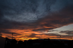 from blue to yellow (glasnevinz) Tags: newzealand wairarapa martinborough sunset cloud night sky