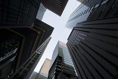 Upward view of Tokyo skyscrapers (huzu1959) Tags: fe1224mmf4g a7ii alpha7ii sonya7ii alphaa7ii sonyalpha7ii sonyalphaa7ii sony