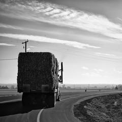 Bales Moving (jasonroecker) Tags: squareformat truck straw hay farmlife farm cheap blackandwhite bw niftyfifty 50mmf18d 50mm d850 nikon