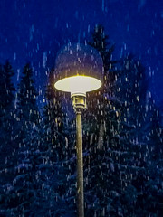 Hello Lamp Post (langdon10) Tags: nittedal norway rotnes forest light nighttime snow trees winter