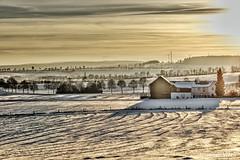 View of Töpen (GerWi) Tags: töpen winter dämmerung sunset schneefelder himmel sky village fz1000