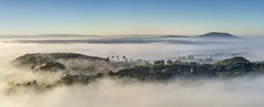 *Valley of the morning mist @ Panorama* (Albert Wirtz @ Landscape and Nature Photography) Tags: albertwirtz wittlich panorama panoramic nebel mist nebbia laniebla brume bruma brouillard fog germany deutschland allemagne rheinlandpfalz rhinelandpalatinate moseleifel eifel südeifel nature natur natura landscape paesaggi paysage campo campagne campagna paisaje herbst fall autumn autunno nikon d810 wittlichersenke wittlichvalley morgennebel morningmist haida haidagnd09softgrauverlauffilter grauverlauffilter rhénaniepalatinat