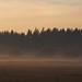 Dunst / Mist