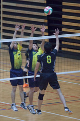 20180512_IMG_7151 (ko_en_volleyball_para) Tags: スポーツ sports バレーボール volleyball パラ para 聴覚障害 deaf the 18th national disabled competition hearing impaired area preliminary 2018 第18回 全国障害者スポーツ大会聴覚障害者バレーボール競技 地区予選大会 大田区体育館 otacity general gymnasium 栃木 tochigi 東京 tokyo
