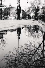 02/30 2018/02 (halagabor) Tags: bnw blackandwhite monochrome street streetphoto streetphotography urban city citylife budapest hungary puddle reflection mirror walk walking nikon d610 nikkor manualfocus vintagelens