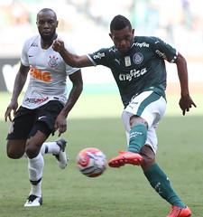 Palmeiras x Corinthians (02/02/2019) (sepalmeiras) Tags: allianzparque campeonatopaulista corinthians palmeiras sep sériea1 borja