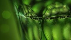 Green Glas (Renate Bomm) Tags: champagner green grün macromondays macroorcloseup renatebomm samyangaf35mmf28 sekt sonyilce6000 bokeh schärfentiefe