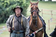 lombard civil war reenactment. july 2018 (timp37) Tags: lombard civil war reenactment july 2018 horse soldier south illinois