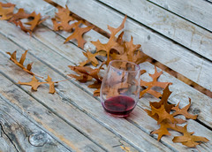Winter Wine. (Omygodtom) Tags: abstract leaves glass wine park bozz 2018 bench maddog