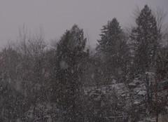 Just the beginning. (petersdawson1) Tags: fall scranton pennsylvania nepa winter snow