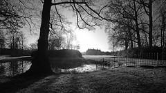 614A2399x_00001 (frans.oost) Tags: dawn sunrise field lake tree castle mist landscape monochrome absoluteblackandwhite abigfave zeiss distagon 18mm f35 ze