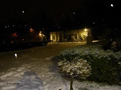 Winter in Bazilescu Park, Bucharest (cod_gabriel) Tags: bazilescu parc park winter iarna iarnă snow zapada zăpadă parculbazilescu bazilescupark bucuresti bucurești bucharest bucarest bucareste romania roumanie românia night noapte