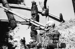 Skull Perched (dualdflipflop) Tags: disney disneyland f100 nikon nikonf100 film blackandwhite bw filmphotography