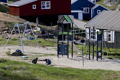 Playground (oxfordblues84) Tags: walkingtour oat overseasadventuretravel greenland eastgreenland tasiilaqgreenland tasiilaq ammassalik ammassalikgreenland ammassalikisland architecture building greenlandarchitecture playgroundequipment playground children kid kids swings swing swingset