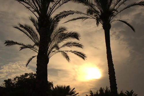 "Atardecer en Málaga. • <a style=""font-size:0.8em;"" href=""http://www.flickr.com/photos/26679841@N00/45417391334/"" target=""_blank"">View on Flickr</a>"