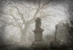 Presence (Loegan Magic) Tags: secondlife statue snow tree blackandwhite monochrome winter