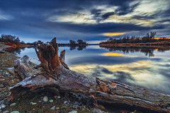 Morning on the Yakima River II (PNW-Photography) Tags: morning sunrise yakimariver columbiariver colorful log tree waterscape water river reflection sky skyscape richland kennewick pasco tricities sonya6000 hdr highdynamicrange shore beach