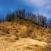 Volcanic ash on a hill