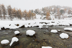 Winter's View (Nicolas Gailland) Tags: landscape nature mountain montagne hiver winter snow neige white blanc autumn fall season colors trees firs river riviere water eau nevache névache claree clarée valléedelaclarée cerces galibier alpes alps alpe france canon hitech filter gnd mark