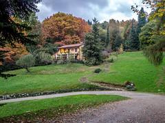 Parco della Burcina (Mauri Rampi) Tags: piemonte biellese foliage pollone biella autunno parcodellaburcina