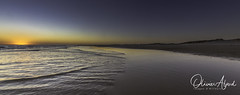 _IO_9201-Panorama-M1s (oalard) Tags: panorama australia australie nsw bay beach sea ocean sun sunset sand dune