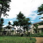 樹林地再整備による地域貢献と新たな魅力の創出の写真
