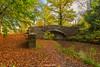 Brecon canal, Autumn colours