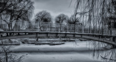 Etude #161220DSC2790. (ptrbsh30) Tags: digitalphoto digitalart bridge winter park snow lake