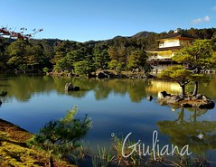 Golden Pavilion - Kyoto (° Giuliana *) Tags: goldenpavilion golden pavilion temple japan giappone tempio lake lago nature natura garden forest lovejapan trees tree albero alberi foto fotografia photography pic amazing green blu verde blue bluesky leaves leave kyoto
