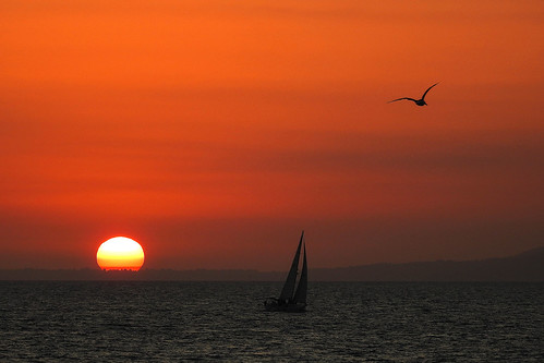 Los Angeles - Sailing into the Sunset