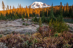 Rainier (jeff's pixels) Tags: landscape nature outdoors hiking pnw washington nationalpark mountrainiernationalpark mountrainier reflectivelake autumn reflection bus bird train nikon d850 nikkor