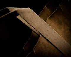 ODC - Paper Bag (Explored) (lclower19) Tags: bag paper odc brown closeup explored
