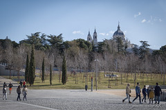 Madrid (José Antonio Domingo RODRÍGUEZ RODRÍGUEZ) Tags: person human tower building architectur spire steeple plant tree dome pedestrian path fir abies vegetation walkway outdoors forest nature woodland land asphalt tarmac urban town city road conifer downtown tire ground