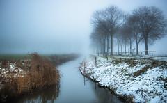 The dating game of hot and cold (Ingeborg Ruyken) Tags: sneeuw morning empel mist instagram 500pxs fog natuurfotografie ochtend flickr snow